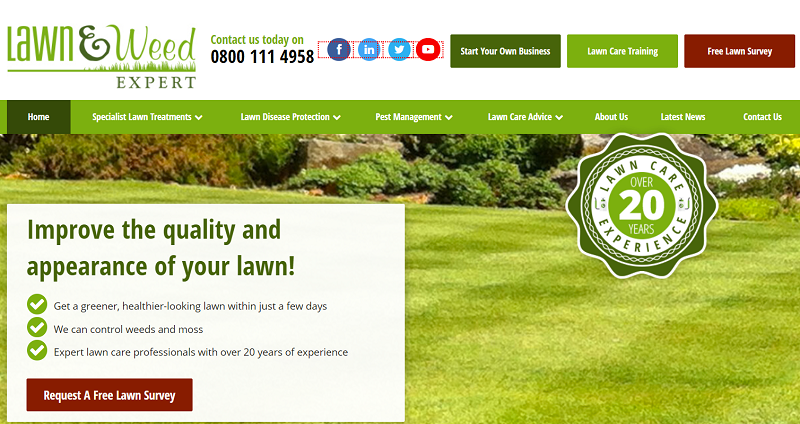 lawn and weed expert