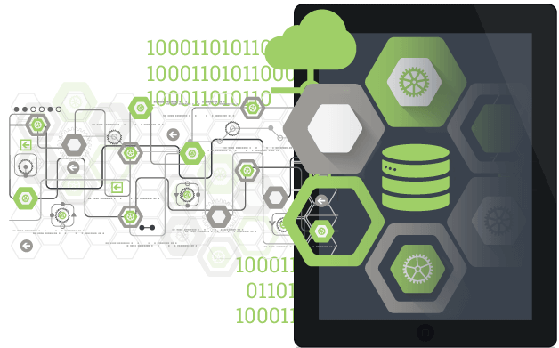 Bespoke web-based solutions