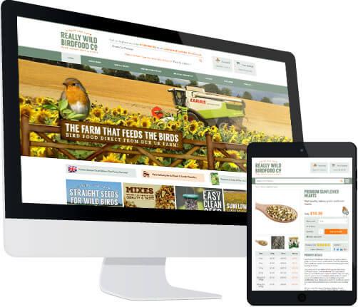 Ecommerce website development